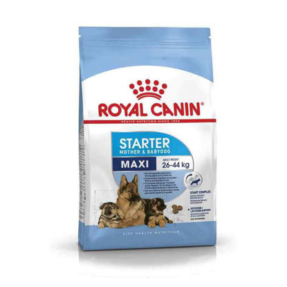 Picture of Royal Canin MAXI starter (կիլոգրամով)