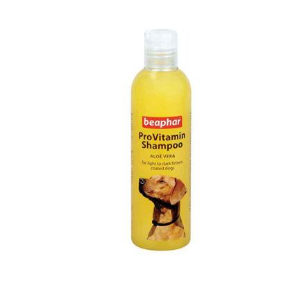 Picture of ProVitamin Shampoo - կարմիր մազերի համար