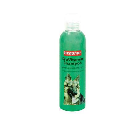 Picture of ProVitamin Shampoo Herbal - զգայուն մաշկի համար