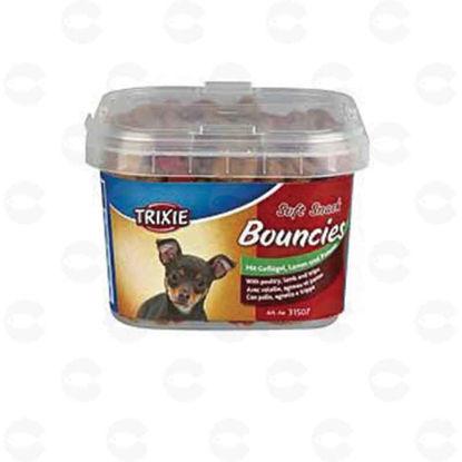 Picture of «Bouncies» ստիկս գունավոր ոսկորներ շների
