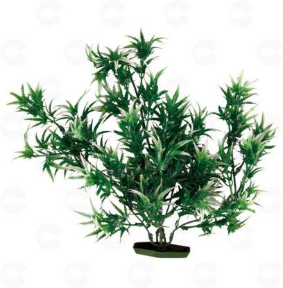 Picture of Դեկոր ակվարիումի համար բույս
