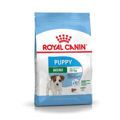 Picture of Royal Canin MINI puppy  (կիլոգրամով)