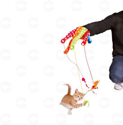 Picture of Ձեռնոց մկնիկներով կատուների համար