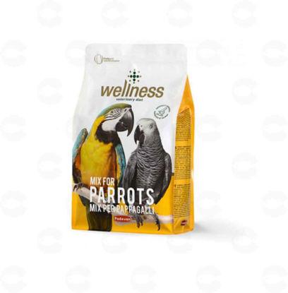 Picture of WELLNESS PARROTS Կեր թութակների համար 2,5կգ