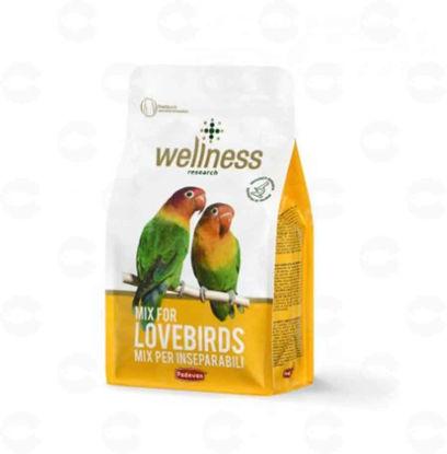 Picture of WELLNESS LOVEBIRDS Կեր անբաժան թութակների համար 850գր