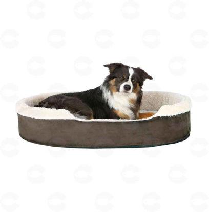 Picture of «Cosma» դմփիկ շների համար