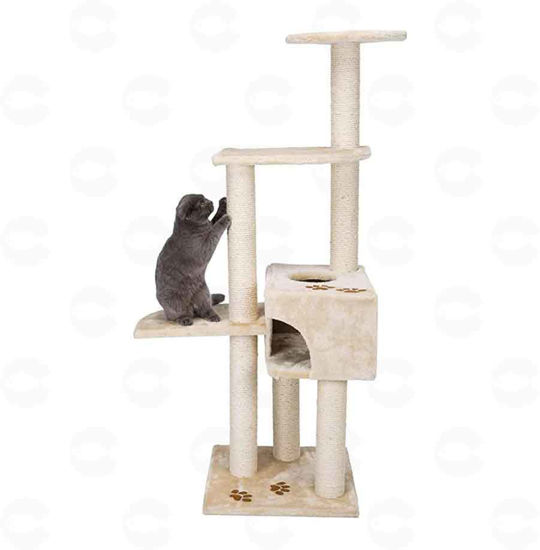 Picture of «Alicante» կատուների համար տնակ