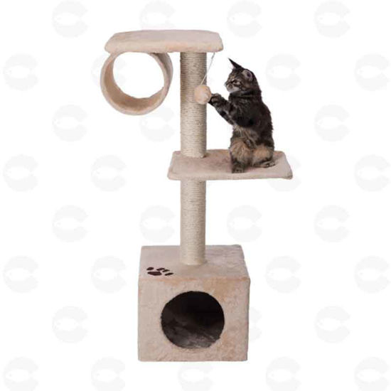 Picture of Տնակ կատուների համար (San Fernando)