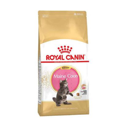 Picture of Royal Canin Mainecoon kitten (կիլոգրամով)