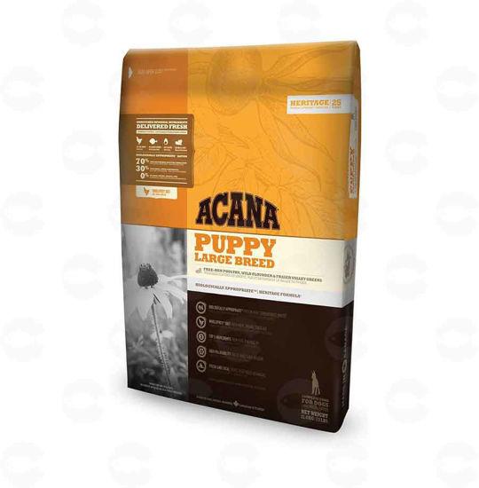 Picture of ACANA Puppy Large Breed - Չոր կեր (կիլոգրամով)